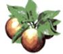 Pommier - Basculement