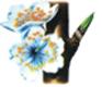 Prunier - Hauteur de la plante : 30 – 40 cm